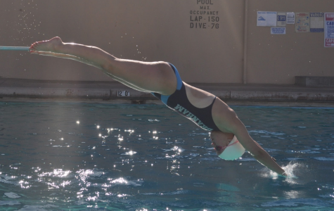 Shallow pool means limits swimmers' options