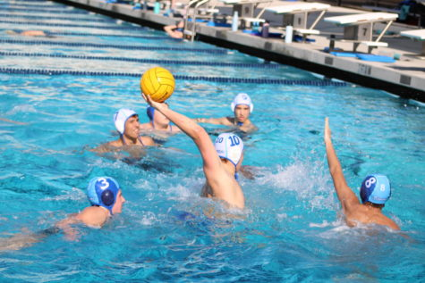 The boys water polo team practice.